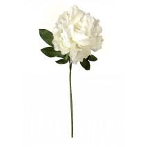 Пион белый 62 см