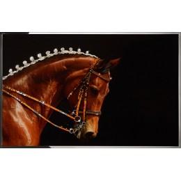Королевский конь