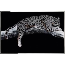 Серебряный леопард