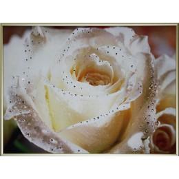 "Картина Swarovski ""Чайная роза"""