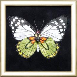 "Картина с кристалами Swarovski ""Бабочка Капустница"""
