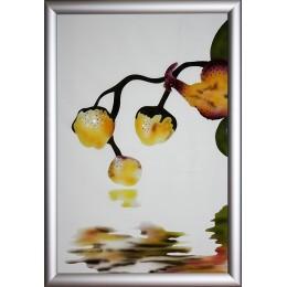 """Картина Swarovski """"Орхидея -1"""""""