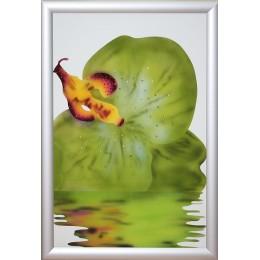 """Картина Swarovski """"Орхидея -5"""""""